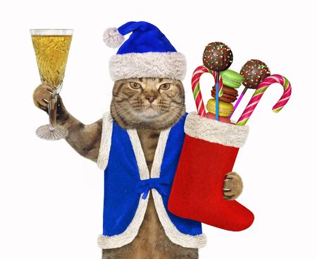 The beige cat in a blue Santa Claus clothing with a red Christmas stocking of sweet gifts is holding a glass of champagne. White background. Isolated.