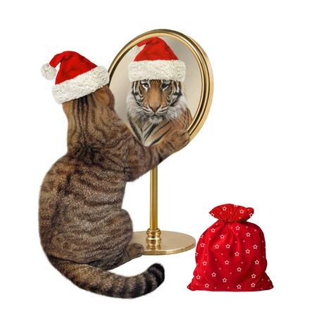 The beige cat in a red Santa Claus hat with a bag of Christmas gifts looks at his reflection in the mirror. It sees a tiger there. White background. Isolated.