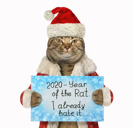 """The beige cat in the red Santa Claus hat and a winter coat is holding a sign that says """" 2020 - Year of the Rat. I already hate it. """". White background. Isolated."""