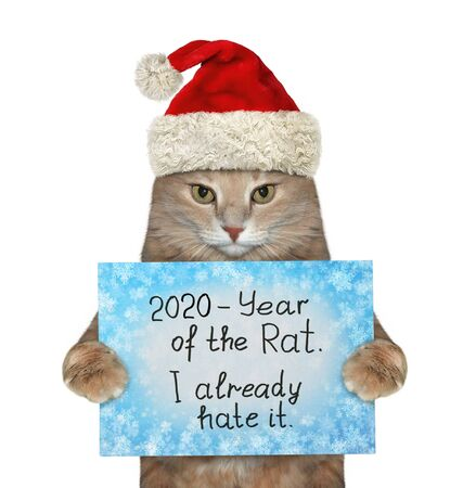 The beige cat in the red Santa Claus hat is holding a winter sign that says  2020 - year of the rat and I already hate it. White background. Isolated.