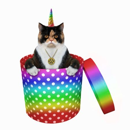 The multi colored caticorn with a golden locket in its neck is inside a cylindrical rainbow polka-dot gift box. White background. Isolated. Reklamní fotografie