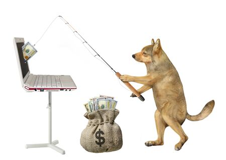 The beige dog fisher catches dollars from the computer with a fishing rod and put them into a sack. White background. Isolated. Zdjęcie Seryjne