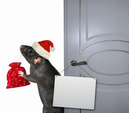 The black rat in a Santa Claus hat with a red bag of Christmas gifts is standing near the open door on which there is a blank sign. Zdjęcie Seryjne