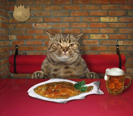 The beige cat is eating grilled fish with beer at a table in a restaurant. 写真素材