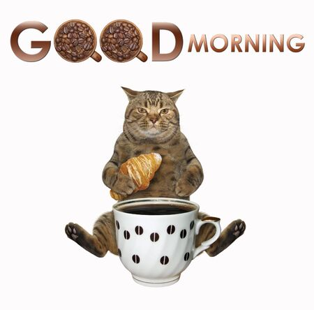 The cat with a croissant is sitting near the big cup of black coffee. Good morning.  White background. Isolated. Reklamní fotografie