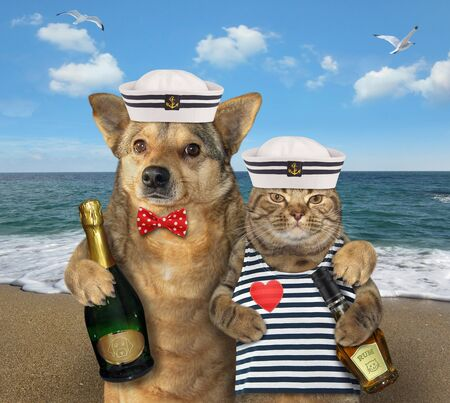 The dog mariner with champagne is hugging the cat in a sailors clothes with a bottle of rum on the beach of the sea.