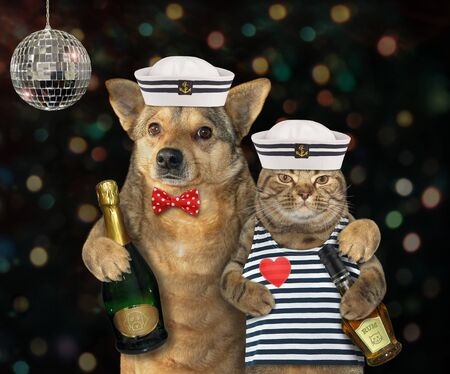 The dog mariner with champagne is hugging the cat in a sailors clothes with a bottle of rum at the party.