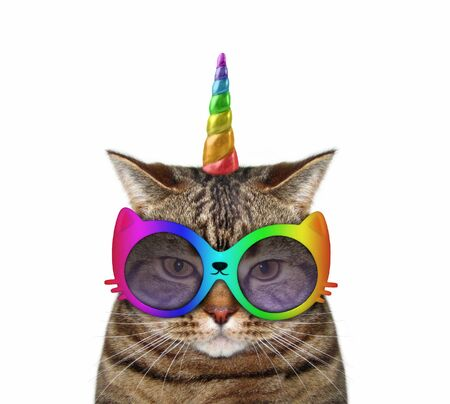 The cat unicorn wears the funny sunglasses. White background. Isolated.