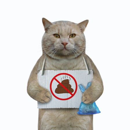 """The cat has a sign around his neck that says """" no pooping """". He holds a blue plastic bag with poop. White background. Isolated. Archivio Fotografico"""