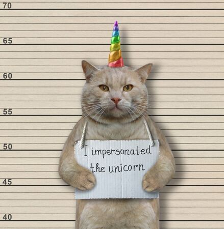 """The cat criminal has the sign around his neck that says """" I impersonated the unicorn """". Lineup background."""