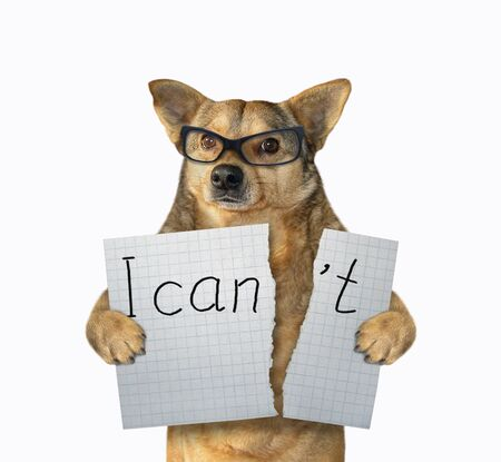 """The dog in glasses is tearing a piece of paper with lettering """" I can't """". White background. Isolated. Stock fotó"""