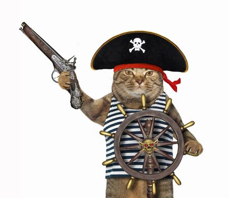 The beige cat in a pirate uniform with an antique flintlock pistol is at the helm of the ship. White background. Isolated.
