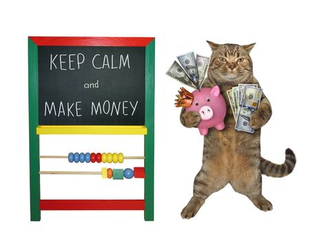 The beige cat businessman is holding a fan of dollars and a piggy bank near a blackboard with inscription keep calm and make money. White background. Isolated. 版權商用圖片