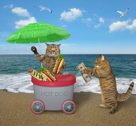 The beige cat is selling hot dogs in the grey mini movable kiosk under a green umbrella on the beach of the sea. White background. Isolated. Reklamní fotografie
