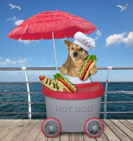 The beige dog is selling hot dogs in the grey mini movable kiosk under a red umbrella on th beach boardwalk. Zdjęcie Seryjne
