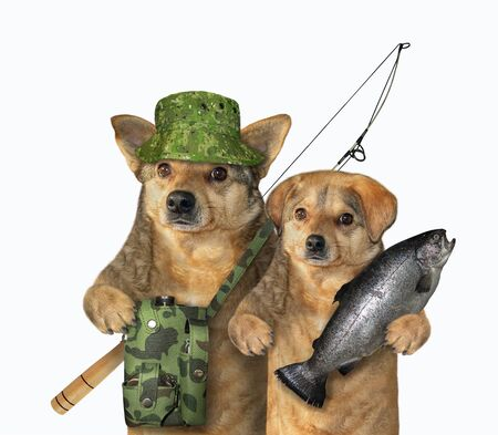 Two dogs are fishers. One of them holds a caught fish, the other with a fishing bag and a fishing rod. White background. Isolated. 版權商用圖片