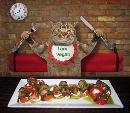 The beige cat in a neck napkin with a knife and a fork is eating healthy food at the table in a restaurant. He is vegan.