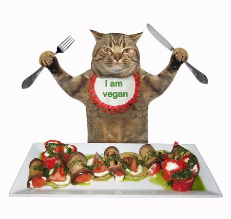 The beige cat in a neck napkin with a knife and a fork is eating healthy food. He is vegan. White background. Isolated. 版權商用圖片