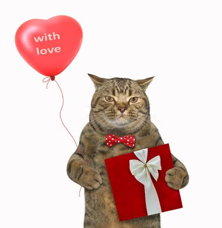 The beige cat in a bow tie holds a heart shaped balloon and a red gift box. White background. Isolated.