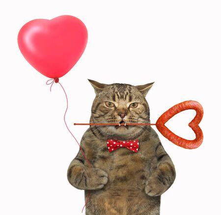 The beige cat in a bow tie is holding a red heart shaped balloon in his paw and a sausage on a stick in his mouth. White background. Isolated.