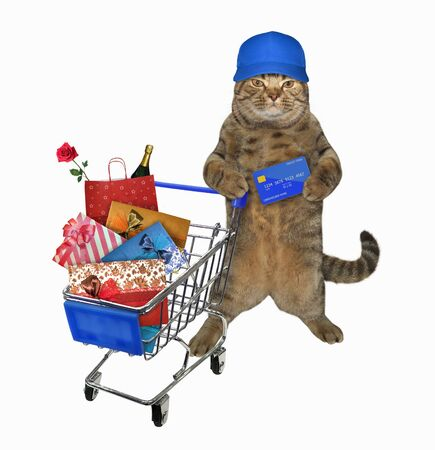 The beige cat in a blue cap with a credit card in his paw is pushing the metal shopping cart full of various goods. White background. Isolated.