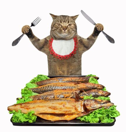 The beige cat in a neck napkin with a knife and a fork is eating oven baked mackerel. White background. Isolated.