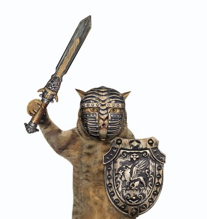 The beige cat knight in a closed helmet is armed with a shield with a dragon and an inlaid sword. White background. Isolated.
