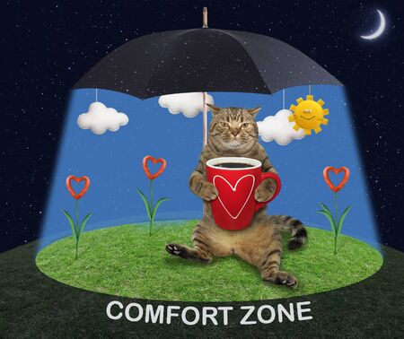 The beige cat is sitting and drinking coffee under a black umbrella in the sunshine on a green meadow with sausage flowers at night.