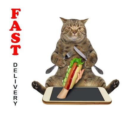 The beige cat with a fork and a knife is taking a hot dog from the phone. Fast delivery. White background. Isolated.