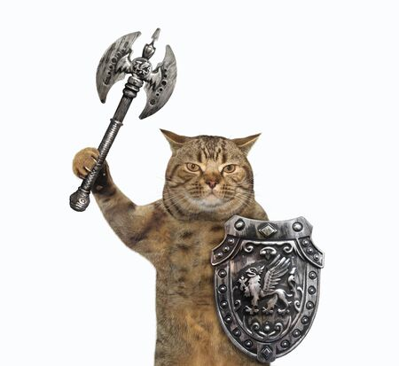 The beige cat viking is armed with a shield with a dragon and a double headed battle axe. White background. Isolated.