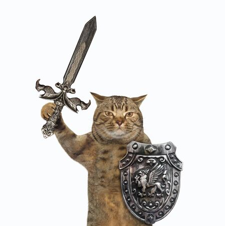 The beige cat viking is armed with a shield with a dragon and an inlaid sword. White background. Isolated.