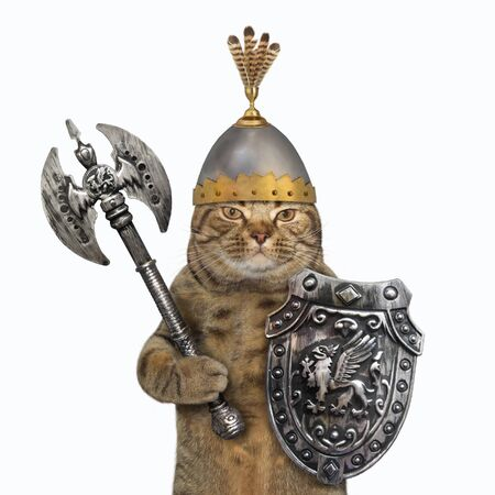 The beige cat viking in a helmet with feathers is armed with a shield with a dragon and a double headed battle axe. White background. Isolated.