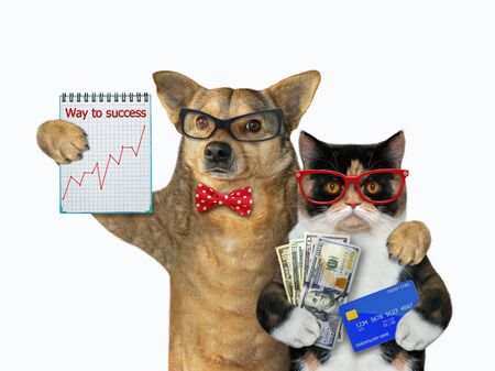 The cat holds a credit card and a fan of dollars. The dog holds a notebook with a financial chart. They stand hugging. White background. Isolated.