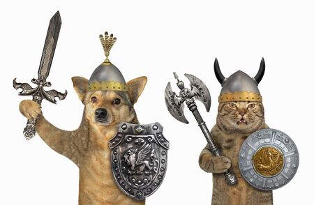 The dog and the cat are armed with shields with a dragon, helmets, an inlaid sword and a two sided axe. They are standing together. White background. Isolated.