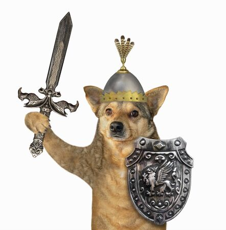 The beige dog viking in a helmet with feathers is armed with a shield with a dragon and an inlaid sword. White background. Isolated. 版權商用圖片