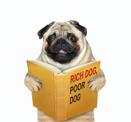The mops is reading a book called rich dog, poor dog. White background. Isolated.