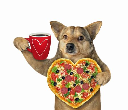 The beige dog is holding a heart shaped pizza and a red cup of black coffee. White background. Isolated.