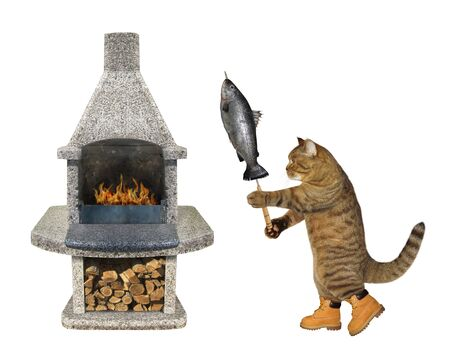 The beige cat in boots is cooking the grilled fish on a steel skewer on a stone bbq grill.  White background. Isolated.