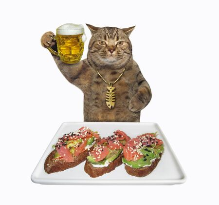 The beige cat in a gold fishbone pendant is eating open sandwiches with salmon and avocado from a square plate and drinking beer from a mug. White background. Isolated. 版權商用圖片