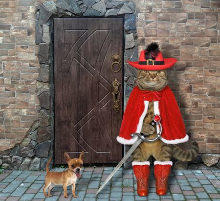 The beige cat in a red musketeer uniform with a sword is guarding the door of an old castle. His dog is next to him.