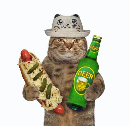 The beige cat in a hat is holding a bottle of light beer and a big hot dog. White background. Isolated.