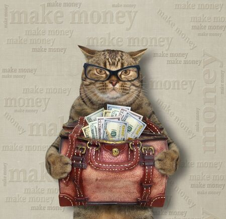 The beige cat in glasses is holding a leather bag full of usa dollars. Make money. 版權商用圖片