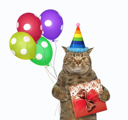 The beige cat in a birthday hat is holding a red gift box and multi-colored balloons. White background. Isolated. 版權商用圖片