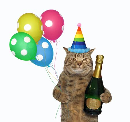 The beige cat in a birthday hat is holding a bottle of champagne and multi-colored balloons. White background. Isolated.