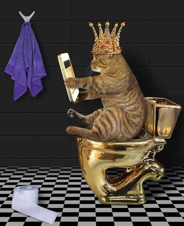 The beige cat king in a crown with a smartphone is sitting on a gold toilet bowl in the bathroom. A roll of toilet paper is next to him.