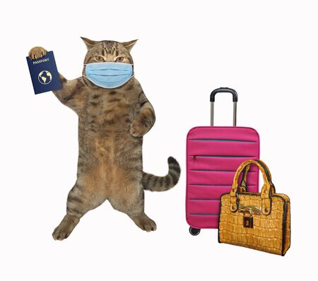 The beige cat in a surgical protection face mask with a passpor and bags is going going to travel. Coronavirus. White background. Isolated.