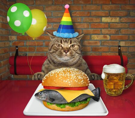 The beige cat in a multi colored party hat is eating a big fresh fish burger from a white square plate and drinking beer at a table in a restaurant.