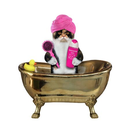 The multi colored cat with a pink towel around his head is taking a bath in a gold bathtub. It holds a hairbrush and a bottle of shampoo.  White background. Isolated. 版權商用圖片