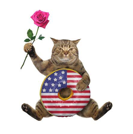 Der beige Katzenpatriot sitzt mit einem großen amerikanischen Donut und einer rosa Rose. Weißer Hintergrund. Isoliert. Standard-Bild