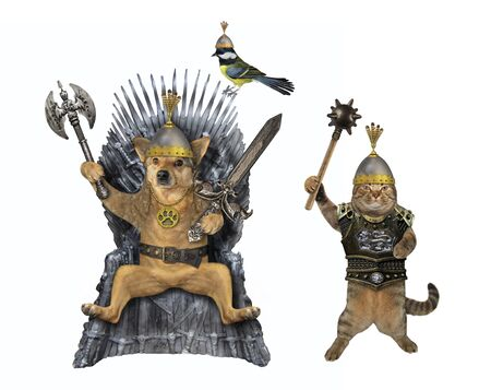 The beige dog king in a steel belt and a helmet with an inlaid sword and an ax is sitting on an iron throne. His warriors are next to him. White background. Isolated.
